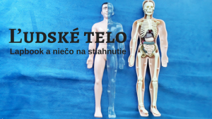 ľudské telo lapbook