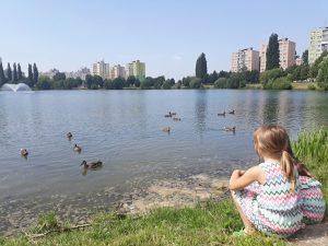 domáca škola na jazere